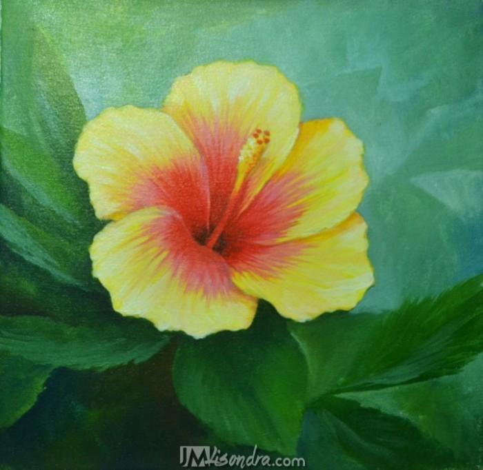 Gumamela Flower Jmlisondra Com