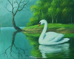 The Swan In The Lake
