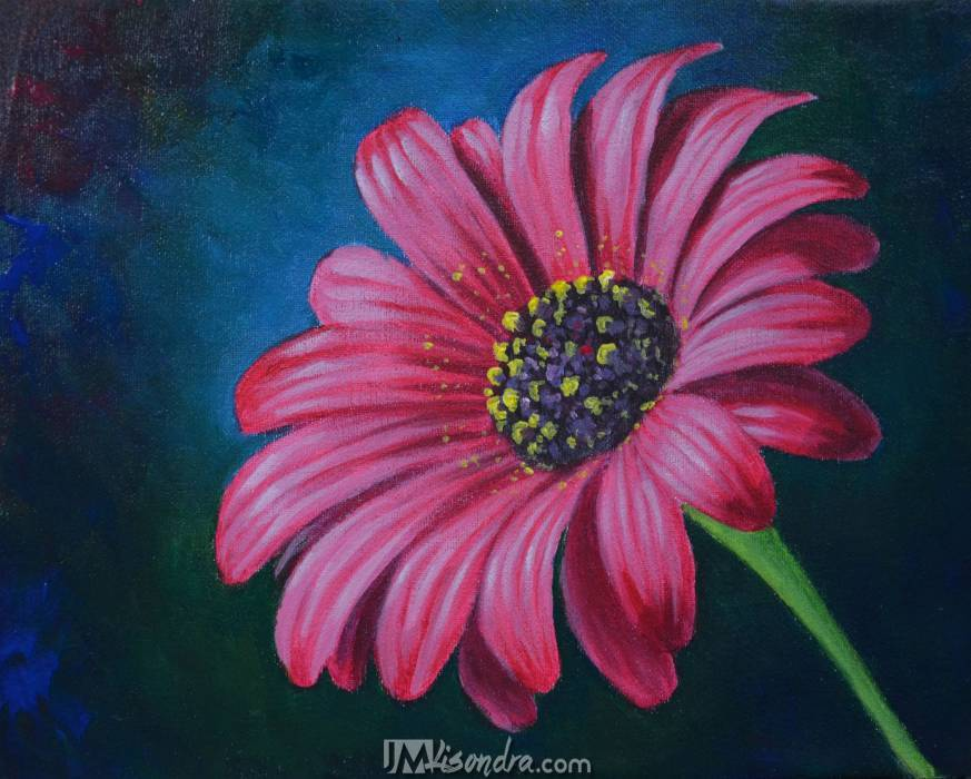 Reference Photos For How To Paint A Daisy Flower In