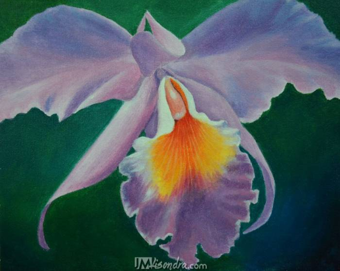 Reference Photo And Traceable For How To Paint An Orchid Flower