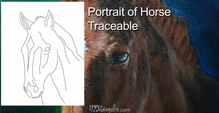 Reference Photos And Traceable For The Portrait Of Horse